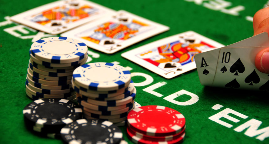 Methods Create Higher Casino With The help Of Your Canine